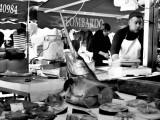 """""""Lombardo's Swordfish"""" Sicily December 2012"""